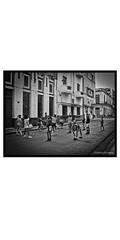 Havana, people(dogs)and place-80 (deangeli.federica) Tags: blakandwhite havana cuba streetphotography habana reportage lahabana strret avana canong10