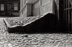 Kopfstein (skinner08) Tags: bw white black analog canon 50mm 150 apx100 a1 agfa sh weiss canoscan schwarz 100asa schleswigholstein schlossberg selfdeveloped pln adox adonal 13min 8800f kleinbild wellenlnge 114ssc