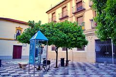 Cordoue - Córdoba 191 (paspog) Tags: spain andalucia andalusia córdoba espagne spanien andalousie cordoue