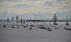Full of boats / Palju paate (Eemeez) Tags: sea finland boats helsinki ships balticsea helicopter