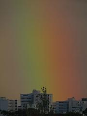 l'ile aux enfants (laetitiablabla) Tags: sky en france color poetry glory arc ile lovers ciel val suburb couleur vues banlieue marne alfortville