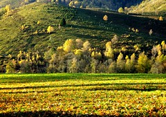 Automne - Otoo  Mont Monn (Bagnres-de-Bigorre) (caminanteK) Tags: france automne couleurs frana couleur couleursdautomne jaunes amarillos midipyrnes hautespyrnes luminosit bagnresdebigorre francelandscap