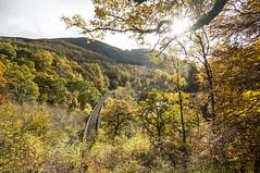 Killekrankie Railway Viaduct,  Perthshire (Gordon Haws) Tags: autumn trees perthshire autumnleaves autumncolours perthandkinross scotlandinautumn beautifulscotland garryriver killekrankie passofkillekrankie killekrankierailwayviaduct killekrankierailwaybridge