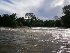 p5260705 (Mr. Pi) Tags: river rapids suriname