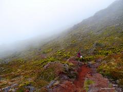 PICO-AORES (jmribolhos54) Tags: portugal mar central mais pico grupo alto ponto vinho aores ilhas verdelho