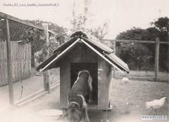 Guaíba RS casa família AnacletoPrati 5