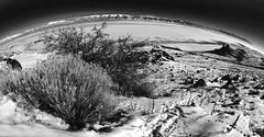 Antelope Island #2 [Explore] (louieliuva) Tags: