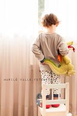 21 de 52 ✔ Encima de algo (Mariló Valle. GUARDANDO TESOROS) Tags: home window ventana casa athome dragón 2014 juanmanuel petitgarçon caucasico marilóvalle bebéenventana bebétoddler