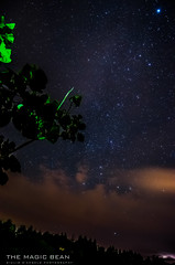 The Magic Bean (Giulio A. D'Angelo) Tags: trees sky storm night clouds stars landscape high nikon long exposure magic bean iso astrophotography sirius thunder 18mm f35 starscape d5100