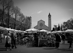 Sn Zn (|v3rba|) Tags: san italia verona mercato antiquariato zeno mercatino veneto