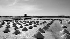 01487 - Le saline di Nubia (Marcello Treglia) Tags: marcellotreglia fujifilmx20 digitale biancoenero blackandwhite saline nubia paceco trapani sicilia
