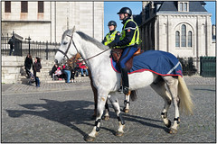 IMG_1490 (rebigil) Tags: chevaux paris montmartre garderépublicaine