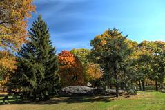 Central Park (Kasimir) Tags: centralpark newyork nyc usa trees fall herbst autumm otoño