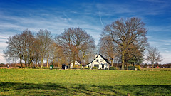 Country Living (Alfred Grupstra) Tags: clouds house pasture treest white zuidlaren drenthe nederland nl nature tree ruralscene grass outdoors architecture sky buildingexterior builtstructure farm autumn usa landscape agriculture blue nopeople barn field scenics