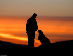 Sunset (photogism) Tags: dog man best friend sunset
