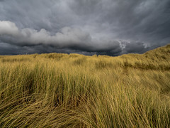 The Foreboding Sky. (hemlockwood1) Tags: sky dramatic clouds sanddunes olympus anglesey wales aberffraw dark foreboding