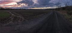 One Way (Tom Zander) Tags: landschaft land landscapes landscape sunrise sunset sonnenaufgang sonnenuntergang tomzander natur wolke wolken cloud clouds way oneway ways weg wege pfad pfade path paths mansfelderland sony alpha