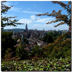 View from Rose garden (Daniela Brocca) Tags: bern meeting tree gap treffen