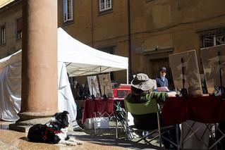 Bologna (Italy) - Mercatino antiquario di Piazza Santo Stefano