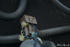 danboard mini (eikidoll_666) Tags: toyphotography outdoortoyphotography toy figure outdoor 屋外撮影 野外撮影 danboard