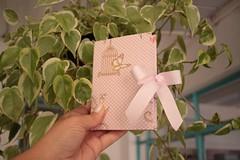 IMG_9714 (Large) (Mimos Art - Para mamães e noivas) Tags: lembrancinha nascimento aniversário chádebebê temajardim gaiolinha borboletas blocodeanotaçãolembrancinha