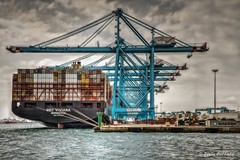 Gruas de Algeciras (Mingui50) Tags: puerto gruas mar barco algeciras contenedores apmterminals mscviviana