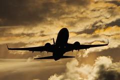 Boeing Jelly (nxgphotos) Tags: boston bostonloganairport boeing737800