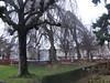 Park Chaudron-Lausanne
