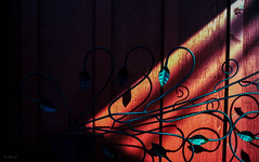Shadow - Film Leica (Photo Alan) Tags: film filmcamera filmscan filmleica red shadow shadowplay sun light vancouver canada