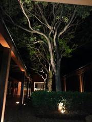 IMG-20151118-WA0021 (alaluxluz) Tags: iluminaçãosustentável projetosluminotécnicos projeção3d equipamentosdeiluminação iluminaçãoresidencial iluminaçãocomercial iluminaçãodejardim iluminaçãosubaquática iluminaçãocênica iluminaçãoteatral iluminaçãodeteatro iluminaçãodepaisagismo lustres lustresdecristal pendentes plafons arandelas abajures colunas apliques embutidos embutidosdesolo embutidosdeparede alabastros luminárias lumináriasdeemergência filtros gelatinas difusores fresnel fresnéis gobos lentes aletas defletoresdeluz acessóriosdeiluminação spots trilhos balizadores refletores projetores postes tartarugas fincosdejardim espetosdejardim cúpulas canoplas vidros globos cristais strobos movingheads lâmpadas lâmpadasespeciais lâmpadasdexenonresidencial lâmpadasdecarbono lâmpadasdegrafeno máquinasdefumaça fitasadesivas led painéisdeled oled fitasled fibraótica automação dimmers controladoresdeluz decoração designdeiluminação lightingdesign lightingfixtures decorativelighting lightingpendants alalux