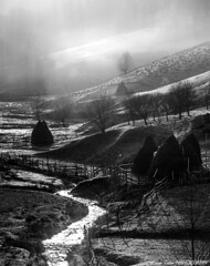 B&W morning (Ioan Todor. Photography's) Tags: stream nature hay haystacks agriculture hills mountains morning sunset day romania transilvanya trees meadows fog mist misty mistery wooden fences counterlight light water valley