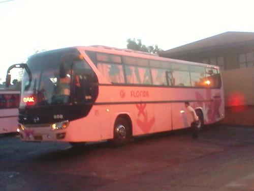 public transport florida