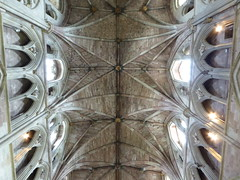 Nave Vault, Worcester Cathedral (Aidan McRae Thomson) Tags: worcester cathedral worcestershire medieval architecture church gothic ceiling vault vaulting