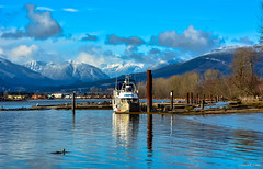 Barnston Island - Surrey, BC (SonjaPetersonPh♡tography) Tags: barnstonisland island katziefirstnation indianreserve fraserriver river water nikond5200 nikon afsdxnikkor18300mmf3563gedvr blueskies sky landscape boats surrey vessel reflections waterreflections mountains bccoastmountains snowcappedmountains riverbank trees dock wharf waterscape seascape