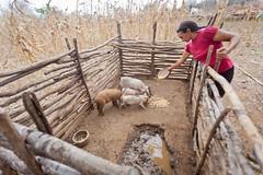IMG_5200 (MauricioPokemon) Tags: asaregionalpiauí brasil cisternadeenxurrada cisternas craúno cáritas mauriciopokemon piauí semiárido sãojoãodaserra