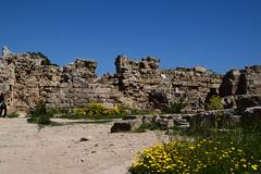 DSC_0247 (mark.greefhorst) Tags: cyprus northerncyprus salamis ancientworld roman