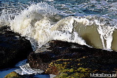 Olitas (Matias Ezequiel Pascualini) Tags: nikon d3200 argentina olas olitas airelibre verde marron agua mar nature naturaleza dia detalles color flcikr del plata teleobjetivo wave water