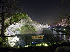IMGP5643 (digitalbear) Tags: pentax q7 08widezoom 17528mm f374 chidorigafuchi chiyodaku tokyo japan yozakura sakura hanami cherry blossom blooming yurakucho tonkatsu shige tokyointernationalforum kokusai forum