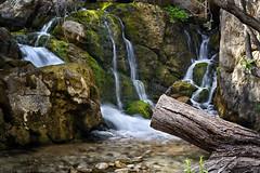 Las fuentes del Algar - The Algar Waterfalls (jmpastorg) Tags: rio river algar fuente water agua waterfall alicante callosa españa spain 2017 abril 1750 filtrond gloxy longeexposure largaexposición nature naturaleza vividstriking