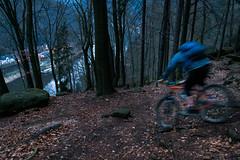 Fährendownhill (MadCyborg) Tags: elbe fuji fujifilm hrensko labe schöna xt20 downhill dunkel mountainbike mtb tsf tsf089 wald
