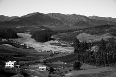 Life on the hill (Karthikeyan.chinna) Tags: karthikeyan chinnathamby chinna canon canon5d mono monochrome bw black white grey india tamilnadu ooty hill mountain travel nature life village farming agriculture canon5dmarkiii