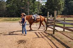 SCRJW-20160926-43.jpg (Woodster917) Tags: southerncrossranch madison families horse klink nature marianklink georgia unitedstates us