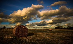 Straw bales and blue skies (Rae de Galles) Tags: sky cumulus fluffy blueskies clouds farmer sheep farm bales straw hay valley goldenhour golden gold field fields mountain mountains nature breconbeacons beacons brecon
