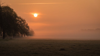 Sonnenaufgang Rieselfelder No. 2
