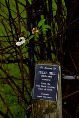mva julie hill plaque (pghflwr2000) Tags: erie eriepa