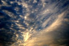 various_29 (davidrobinson62) Tags: skycloudssun