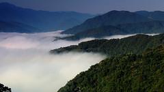 074  Clouds Below (tsuping.liu) Tags: outdoor organicpatttern cloud landscape mountain moment morningglory nature natureselegantshots naturesfinest nationalpark feeling ecotour