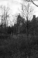 REJECT SESSIONS!!! (a.cadore) Tags: fujifilm fujifilmxt1 nyc newyorkcity xf35mmf2rwr xt1 uptown centralpark landscape blackandwhite bw