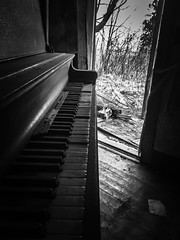 """the quiet keys of """"house of broken hearts"""" (Aces & Eights Photography) Tags: abandoned abandonment decay ruraldecay oldhouse abandonedhouse oldpiano abandonedpiano"""
