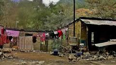 NEPAL, Auf dem Weg nach Pokhara, armselige Behausungen, 16035/8298 (roba66) Tags: reisen travel explore voyages roba66 visit urlaub nepal asien asia südasien pokhara landschaft landscape paisaje nature natur naturalezza arm behausung hütte haus home armselig poor